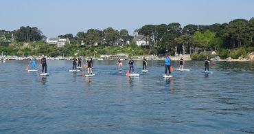 paddle-stage-formation